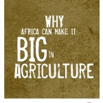 Why Africa can make it big in agriculture