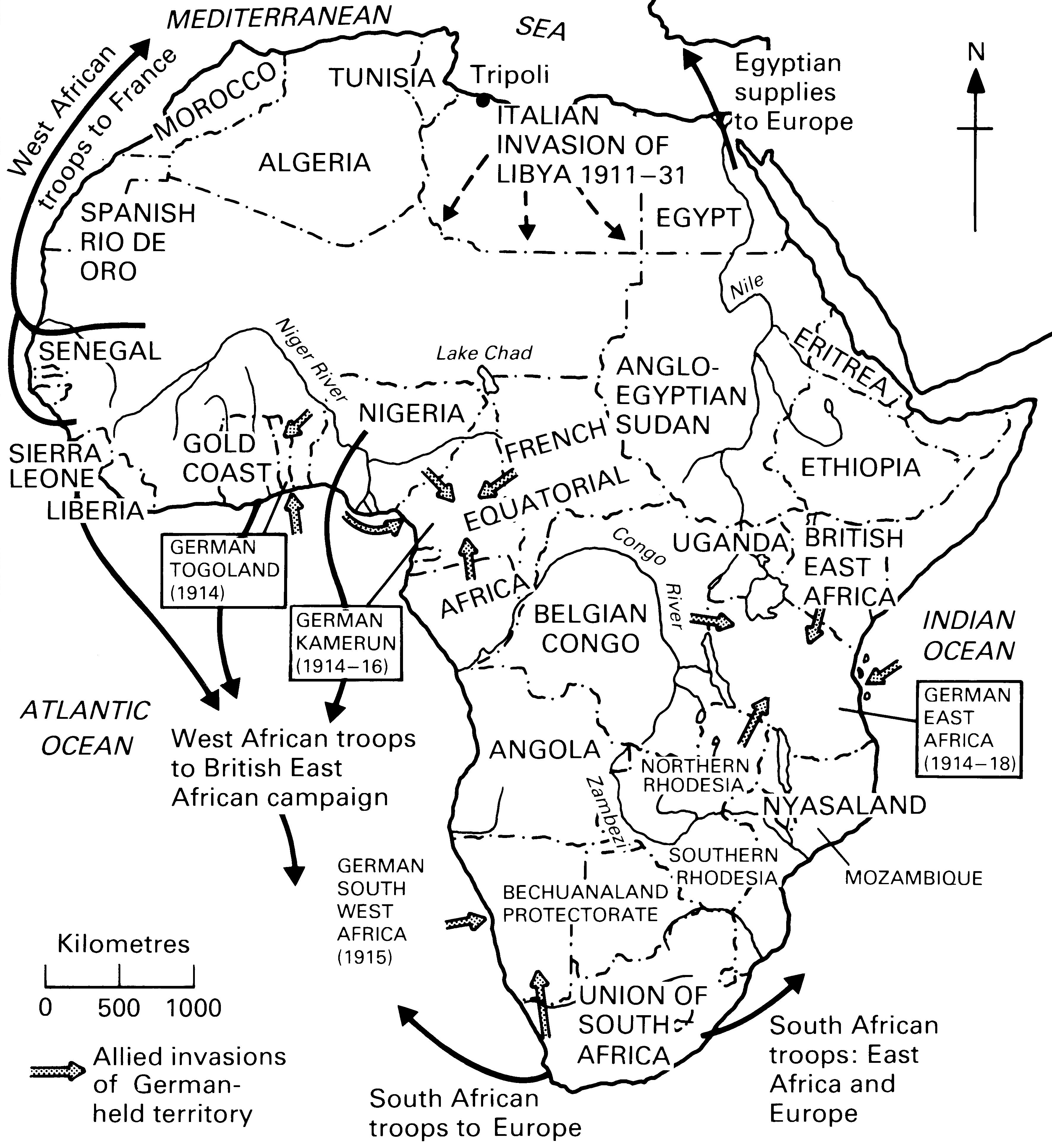 The Great War And The Butcher's Bill In Africa
