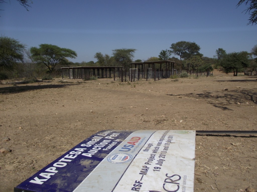 This picture was taken less than a year after the Kapotesa Small Livestock Auction Pen was established in Mudzi District. The fallen billboard has since vanished.