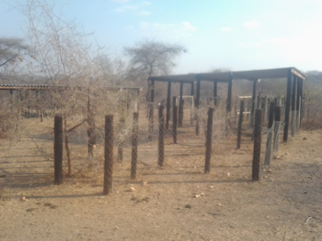 More than three years after the Kapotesa Small Livestock Pen was constructed the project is showing every sign of failure.