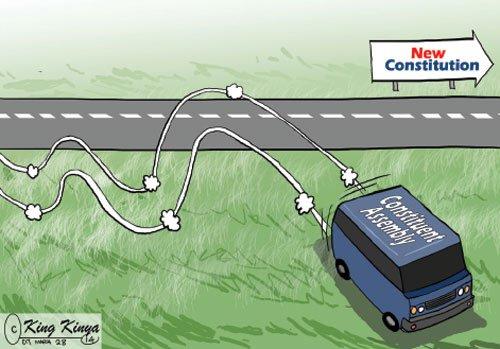 katiba referendum Cartoon Africa Research Institute