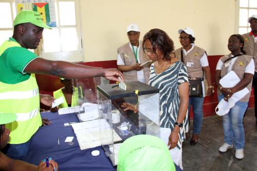 Voters casting their ballot during the 2014 legislative elections: Photo credit - African Union