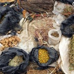 Kenya: Traditional Medicine and the Law