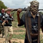 Boko Haram's shifting tactics in Cameroon: what does the data tell us?