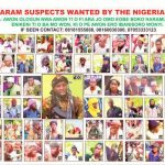 An introduction to Boko Haram's ideologues: from Yusuf to Shekau